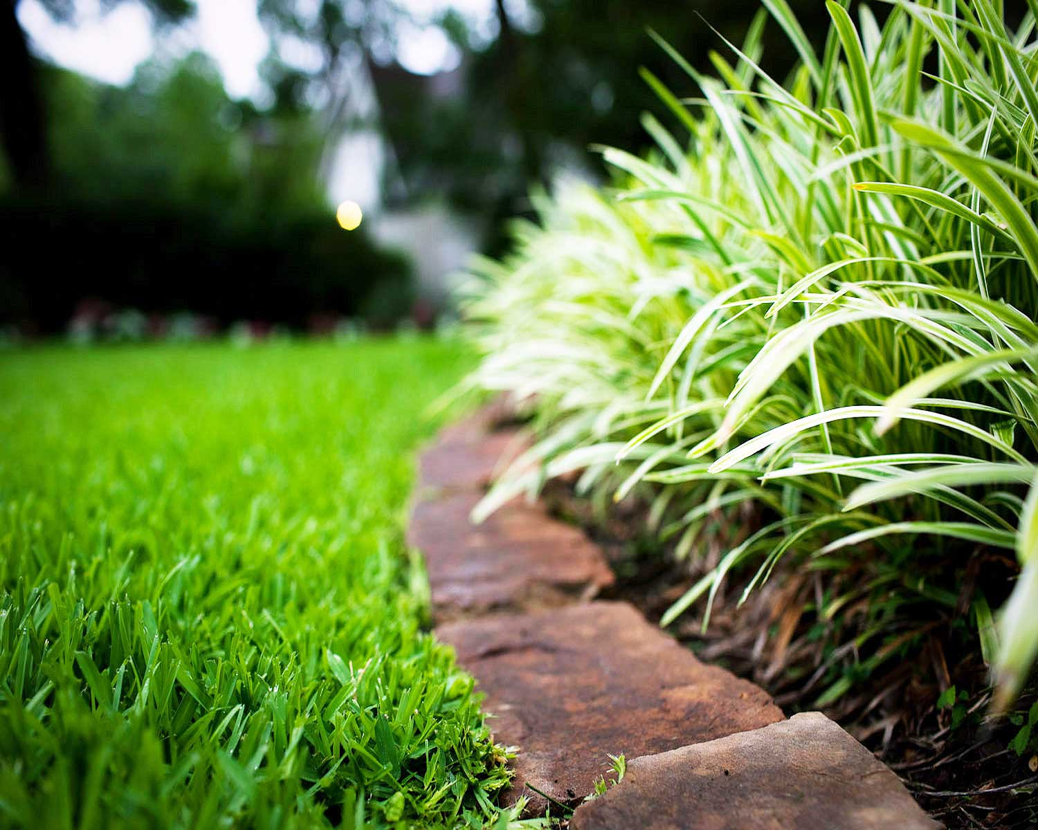Lawn care landscaping services merry moppins cleaning for Lawn and garden services